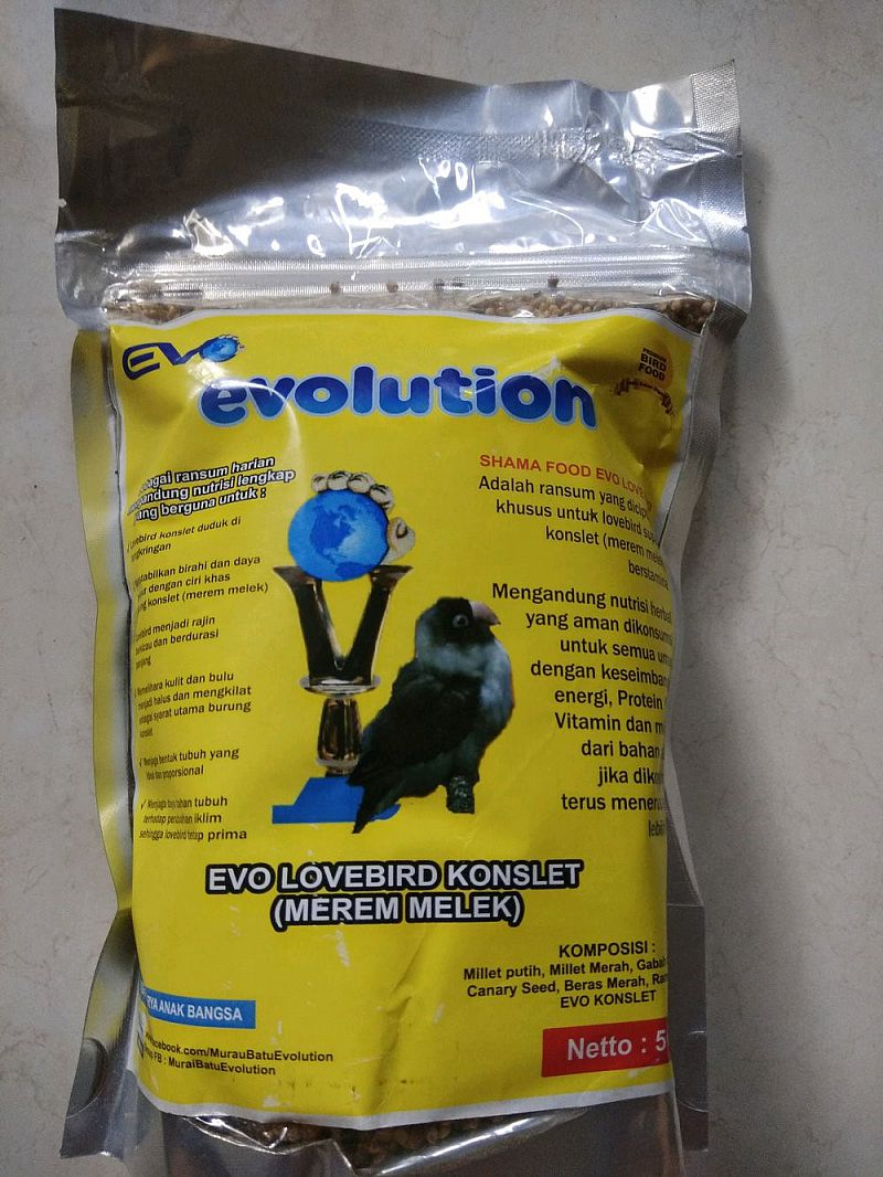 Evolution Evo Lovebird Konslet Pakan Love Bird